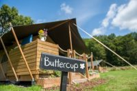 Buttercup SAfari Tent.jpg