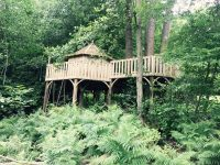 Cheeky Monkey Treehouses 6.jpg