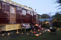 Ninks Circus Wagon.jpg