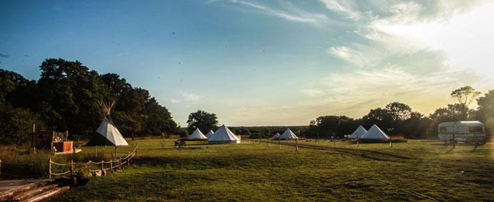Gooseberry-Field-Campsite
