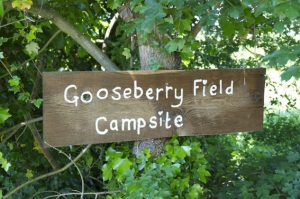 Gooseberry-Field-Sign