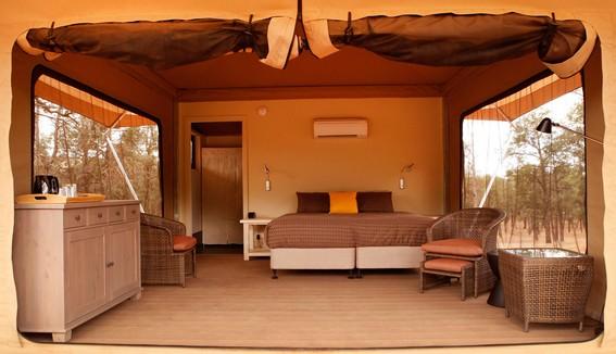 Eco Tent Interior