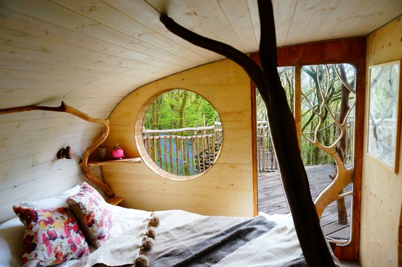 Tree Top Glamping Open Air Business