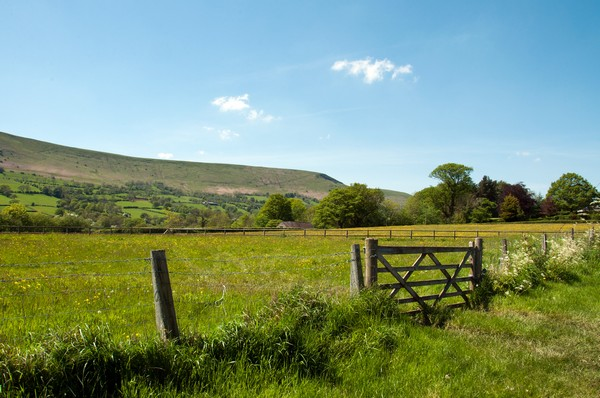 Countryside Gate