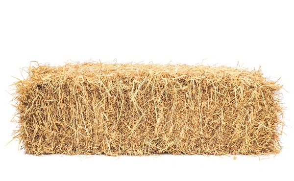 bale of hay isolated