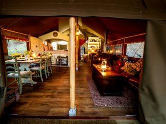 Tsavo safari tents, Albion Canvas