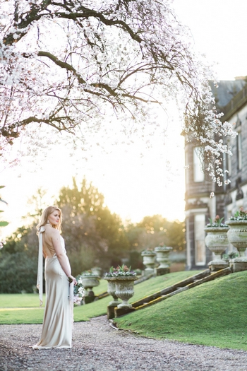 Sandon hall wedding day