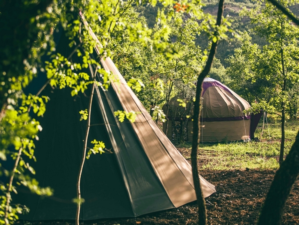Tipis in the woods