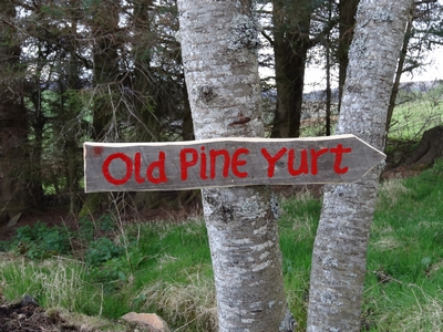 Old Pine Yurt sign post on tree