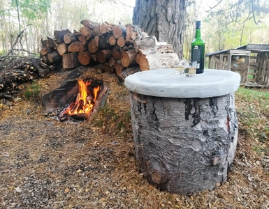 Logs and fire in woods camping