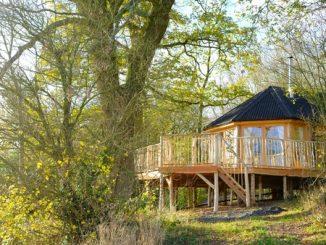 Brook House Woods