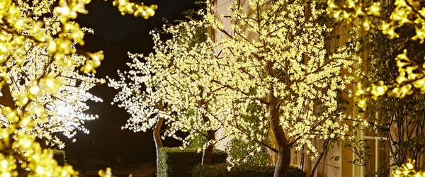 LED trees from Twilight Trees