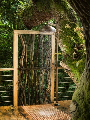 Woodman's Treehouse, Dorset