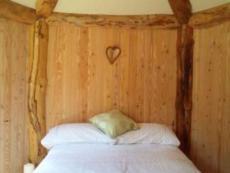 Wild Hart cabin