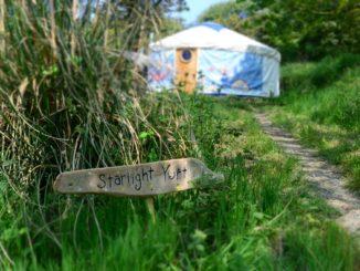 Trellyn Woodland Camping