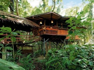 Costa Rica glamping treehouse