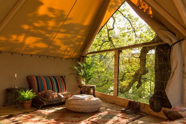 New Leaf Tree House Company