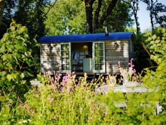 Blackdown Shepherd Huts