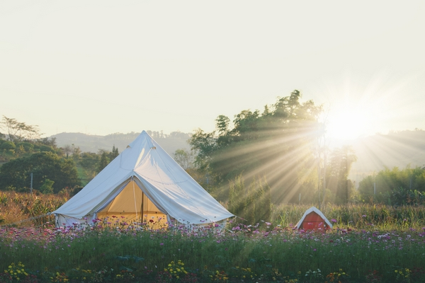 Bell tent in a field