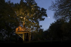 Treehouse lit up in the trees at night