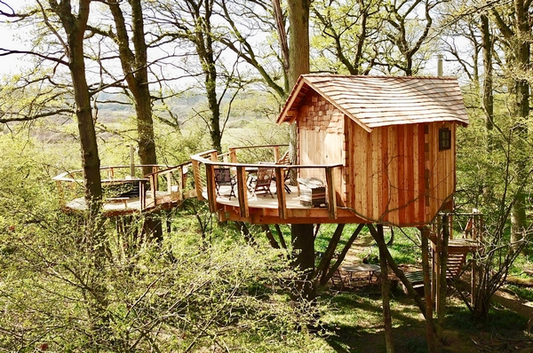 The Peregrine Tree House on the Knepp Estate