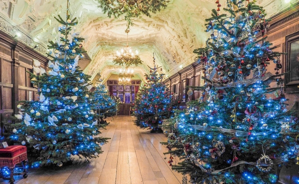 Hever Castle interior with Christmas trees
