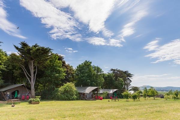 Tapnell farm field