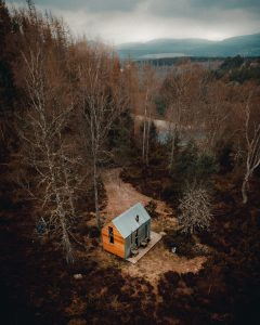 Cabin in clearing of the woods