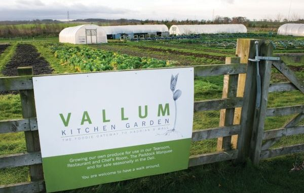 Vallum Farm kitchen gardens