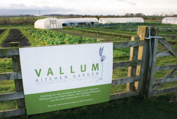 Vallum Farm kitchen gardens