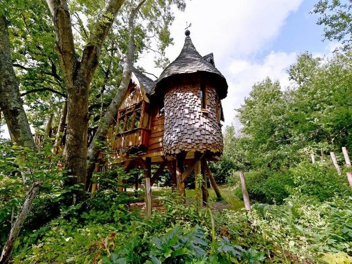 Blackberry Wood treehouse accommodation