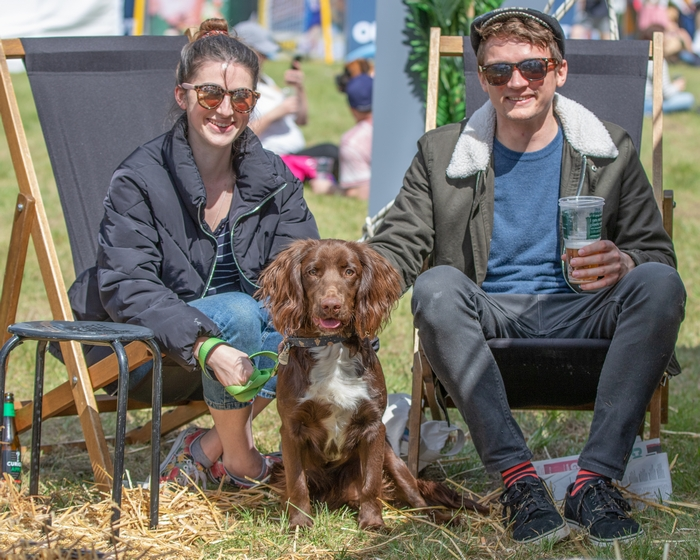 Dog sitting with its owners at Dogfest