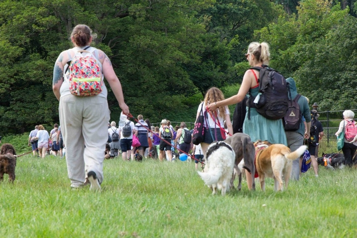 Family walking with their dogs at Dogfest