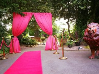 iCatching events pink themed event