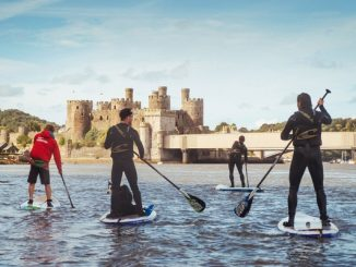 Group of people paddle boarding together