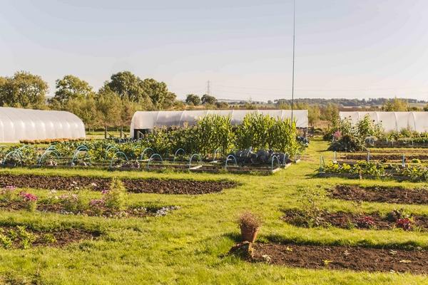 Vallum Farm kitchen gardens on site