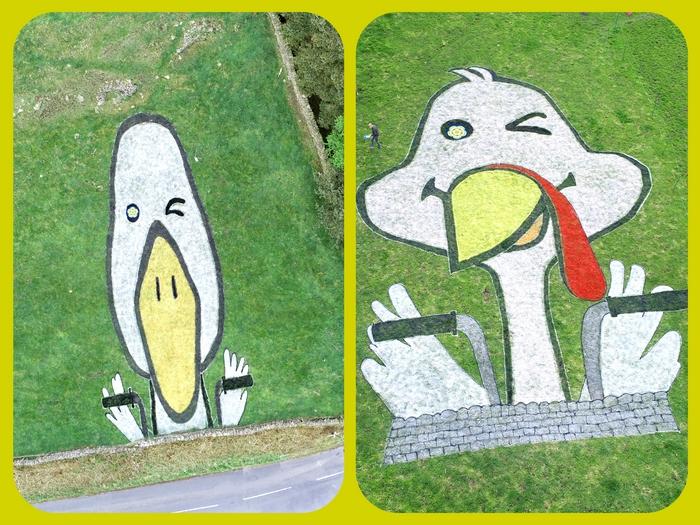 Duck drawing - land art
