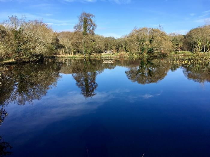 Trecombe Lakes