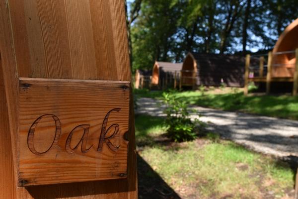 Oak sign at Browsholme Hall