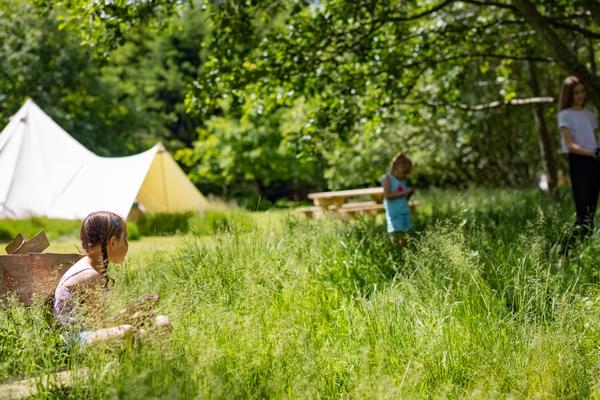Bell tents in a field