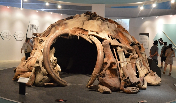 Neanderthal dwelling made from mammoth parts
