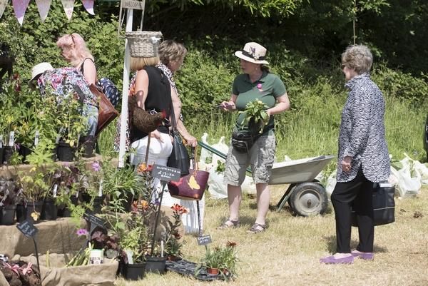 Wealden Times Midsummer Fair outside event
