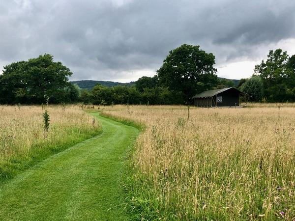 Swallowfield Glamping Retreat hay field
