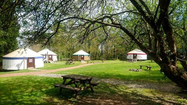 Yurtcamp Devon yurts